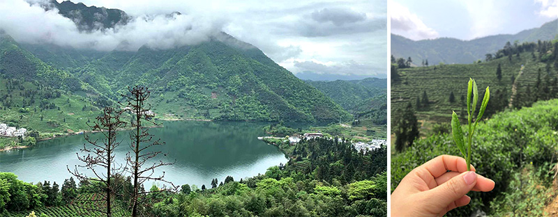 Huang Shan Berge in Anhui, China