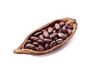 Kakao für schokoladige Glücksmomente.